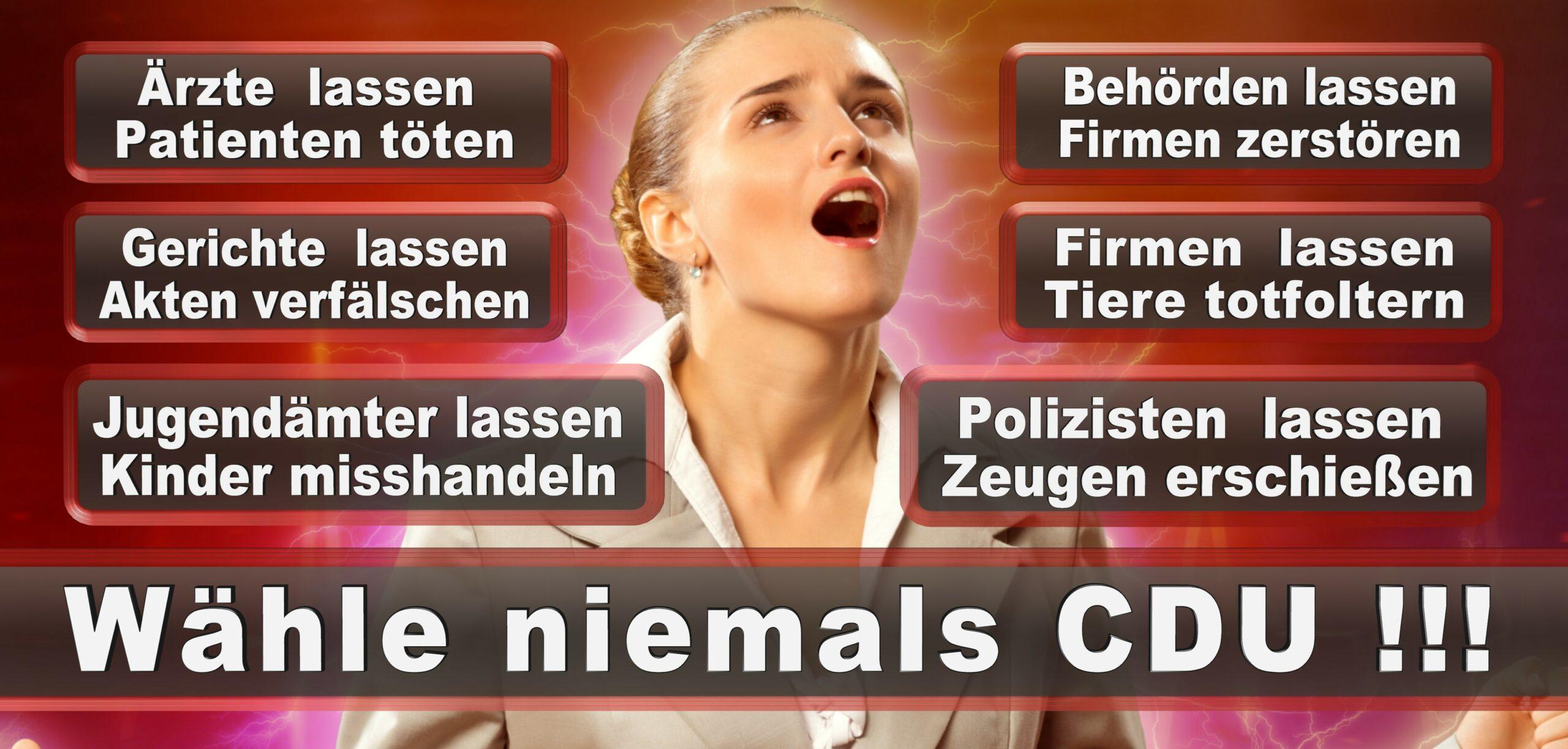 Bundestagswahl 2021 Wahlplakate CDU SPD FDP AFD Grüne Linke Stimmzettel Prognose Umfrage Kandidaten Parteien Datum (71)