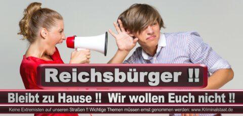 Bundestagswahl 2021 Wahlplakate CDU SPD FDP AFD Grüne Linke Stimmzettel Prognose Umfrage Kandidaten Parteien Datum (9)