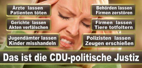 Bundestagswahl 2021 Wahlplakate CDU SPD FDP AFD Grüne Linke Stimmzettel Prognose Umfrage Kandidaten Parteien Datum (64)