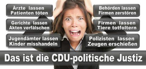 Bundestagswahl 2021 Wahlplakate CDU SPD FDP AFD Grüne Linke Stimmzettel Prognose Umfrage Kandidaten Parteien Datum (68)