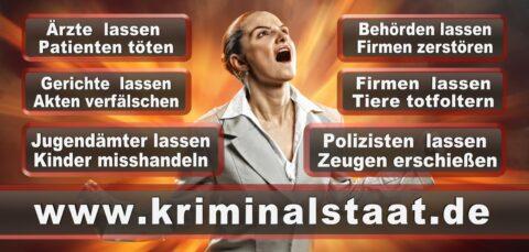 Bundestagswahl 2021 Wahlplakate CDU SPD FDP AFD Grüne Linke Stimmzettel Prognose Umfrage Kandidaten Parteien Datum (74)