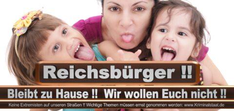 Bundestagswahl 2021 Wahlplakate CDU SPD FDP AFD Grüne Linke Stimmzettel Prognose Umfrage Kandidaten Parteien Datum (8)